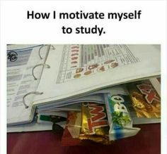 College Motivation, Confidence and Mindset Hacks - College Study Smarts College Motivation, Good Motivation, Study Motivation, Revision Motivation, Autocad 3d, Studying Funny, Video Humour, Funny Quotes, Funny Memes