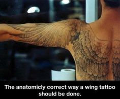 Anatomically correct wing tattoo...awesome.