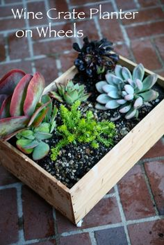 Wine Crate Planter DIY — my.life.at.playtime.