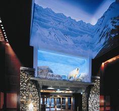 Experience Alaska luxury hotel accommodations at The Alyeska Hotel & Resort. Alaska Trip, Alaska Usa, Alaska Travel, Ski Resorts, Hotels And Resorts, Best Hotels, Amazing Hotels, Beautiful Hotels, Travel Divas
