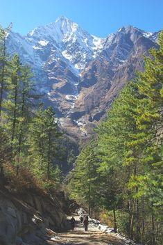 Nepal Tour Package - Book Nepal Trekking Tour Package with Local Travel Agency in Kathmandu on Lowest Trip cost Scenic Photography, Nature Photography, Nepal Culture, Nepal Trekking, New Travel, Scenery, Places To Visit, Tours, Nepal Tattoo