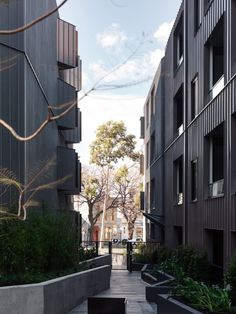 """The cluster of buildings is separated by pedestrianised lanes similar to the narrow alleys that thread their way through central Melbourne, creating """"a village-like environment""""."""
