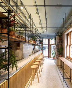 A spine of steel framework runs the length of this Greek restaurant in London.