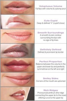 Lip types. Handy for knowing how to draw different people