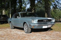 Ford USA - Mustang - 1966 Mustang 1966, Mustang For Sale