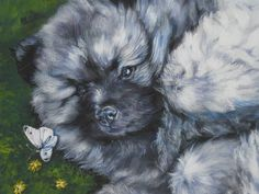 Keeshond puppy art print canvas print of LA Shepard by TheDogLover