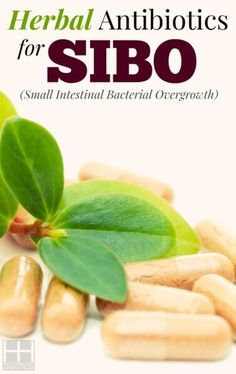 Hypothyroidism Diet Recipes - Treating SIBO (Part Herbal Antibiotics for SIBO - Hollywood Homestead - Get the Entire Hypothyroidism Revolution System Today Fodmap Recipes, Diet Recipes, Small Intestine Bacterial Overgrowth, Hypothyroidism Diet, Fodmap Diet, Low Fodmap, Fodmap Foods, Anti Inflammatory Diet, Wellness