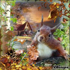 HERBST MIT EICHHÖRNCHEN-Autumn with Squirrel-CHALLENGES