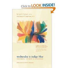 Wednesday Is Indigo Blue: Discovering the Brain of Synesthesia   by Richard E. Cytowic (Author), David M. Eagleman (Author), Dmitri Nabokov (Afterword)