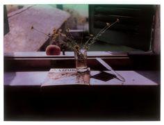 Andrei Tarkovsky's Polaroid photographs to be auctioned