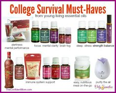 Back to School with Young Living Essential Oils means healthy and happy families - Check out what I wish I would have sent with my daughter on her first year of college to avoid Shingles, Mono and exhaustion. {Also a Back to School FREE bonus special! Yl Oils, Yl Essential Oils, Therapeutic Grade Essential Oils, Young Living Essential Oils, Essential Oil Blends, Doterra Oils, Back To School Essentials, College Survival, Living Essentials