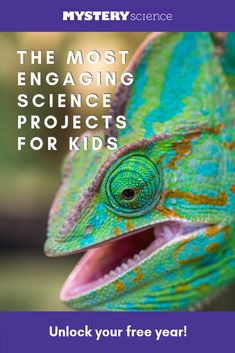 Inspire kids with over 200 engaging, open-and-go lessons. No teacher training or credit card required. Get free access for the entire school year. 4th Grade Science, Stem Science, Preschool Science, Science Resources, Preschool Lessons, Science Lessons, Teaching Science, Science Education, Earth Science