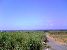 Miyako-jima