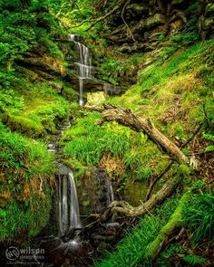 Corby's Letch Waterfall. There are some truly stunning walks around the crags