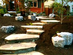 NORTHWEST LANDSCAPING | ... , and a very contemporary pacific northwest garden taking shape