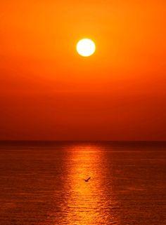 海上日出 -