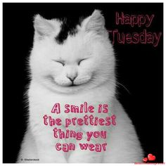 Download for free wonderful tuesday quotes and blessings. Enjoy your day with this nice pictures, images and photos very very cute. Join in now.-BeautifulImages.net - Download for free nice images and Pictures for Facebook and Whatsapp!