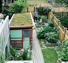 This run-down row house in Boston was transformed into a quiet urban oasis by Lyle Bradley for his family. The backyard sports a sequence of raised flower and vegetable beds and two green roofs—one atop a detached workshop and other atop the back entrance. Photo by  Christopher Churchill