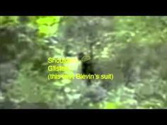 1996 memorial day bigfoot footage