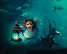Fabulous underwater world
