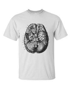 Mens Human Anatomy Brain T Shirt Vintage Science Biology Screen Print   eBay