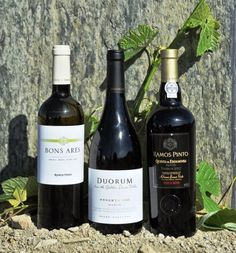 Divulgação: 4.º Concurso de Vinhos do Douro Superior elegeu os melhores vinhos da sub-região - http://reservarecomendada.blogspot.pt/2015/05/divulgacao-4-concurso-de-vinhos-do.html