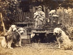 "Emily Carr and pets ""Prince Pumkin, Lady Loo, Young Jimmy, Adolphus the cat… Emily Carr, Canadian Painters, Canadian Artists, Totem Pole Art, Dulwich Picture Gallery, Group Of Seven, Canada, Impressionist Paintings, Dog Photos"