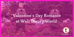 Disney World Valentine's Day Romance: Mix and Match Your Plan