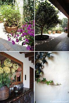 detalles patio/ patio details | Casa Haus