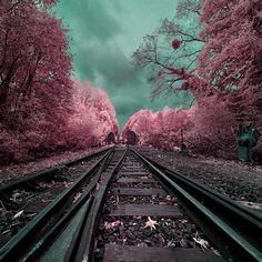 French photographer David Keochkerian's infrared photography.