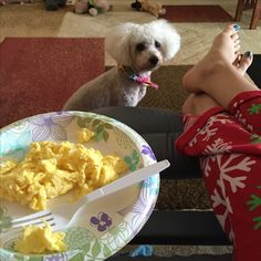 #Day22.  I think Cuddles wants my eggs.