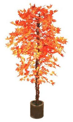 Artificial plant hire - 6ft Red Japanese Maple - Artificial Silk Plant & Artificial Tree Range