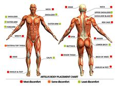 Tattoo Process  Pain charts by V Dot Tattoo Co., via Behance