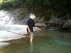 渓流に入る、なう。 - フォト蔵