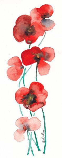 Watercolor coquelicot