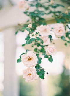 Hand Tied Garden Bouquet Tutorial via Once Wed