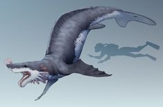 Kiniqali by JackTheVulture on DeviantArt Alien Creatures, Ocean Creatures, Fantasy Creatures, Mythical Creatures, Alien Concept Art, Creature Concept Art, Fantasy Monster, Monster Art, Creature Feature