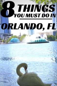 """Going on vacation to Orlando, Florida? Here are  8 must-do things in """"The City Beautiful,"""" from night life to tailgating, and even the best place to get traditional Vietnamese Pho!"""