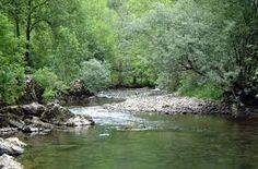 """Résultat de recherche d'images pour """"rivière"""" Images, Water, Outdoor, Paisajes, Search, Water Water, Outdoors, Outdoor Games, The Great Outdoors"""