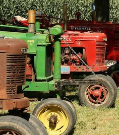 Antique tractors ~ makes me think of my father's old David Brown Tractor, and his old White Tractor that had a hand crank in the front.