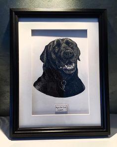Boycie 2001-2015. #dogportrait commission completed and framed . #labrador #dogsofinstagram #dogstagram #dogoftheday #dogs_of_instagram #dogs