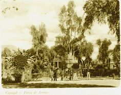 Vista de la Plaza de Armas de Copiapó, fines del Siglo XIX.