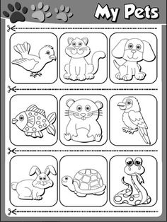 preschool pet theme worsheets google search preschool activities preschool preschool. Black Bedroom Furniture Sets. Home Design Ideas