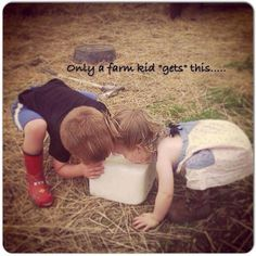 "For all of those that aren't ""farm"", that's a salt/mineral block. For the cows. They lick it... so did every single kid who ever grew up on a farm. Yes, we survived."