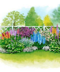 Garden center online - your plant specialist for 70 years - 30 long-flowering bedding plants in 7 different varieties Perennials Flower Bed Plants, Balcony Flowers, Flower Beds, Garden Plants, Buy Plants, Landscaping Around Trees, Landscaping With Rocks, Perennial Border Plants, Long Flowers