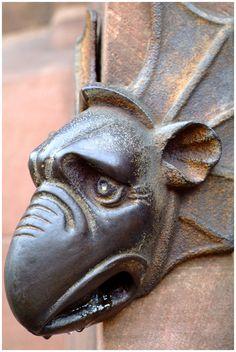 Strasbourg, Cathédrale © Alex Grisward www.alex-grisward.com