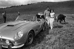 "• Cows VS horses. Ferrari 250 GT California ""Spider"" with Roger Vadim & Catherine Deneuve 1961' • www.carandvintage.com By Gérard Gery #CarVintage  #mountains #morzine #alps #art #ferrari #mercedesbenz #porsche #bmw #bugatti #carporn #vintage #firstpost #first #elegance #lux #luxury #luxurycar #luxurylife #f4f #fashion #cars #londoncars #blacklist #newyork #autoporn #automotive #instacar #follow #cool"