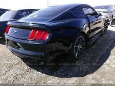 2015 Ford Mustang 2.3 Ecoboost  Scott Clayton