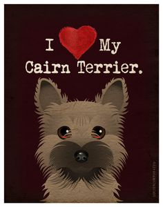 I Love My Cairn Terrier!