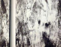 Il buco dentro agli occhi o il punto dietro la testa / Fusignano RA Museo civico San Rocco / 30 novembre 2014 - 25 gennaio 2015 / Werter Turroni